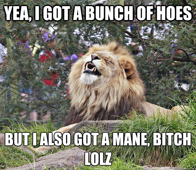 Yea, I got a bunch of hoes but I also got a mane, bitch  lolz
