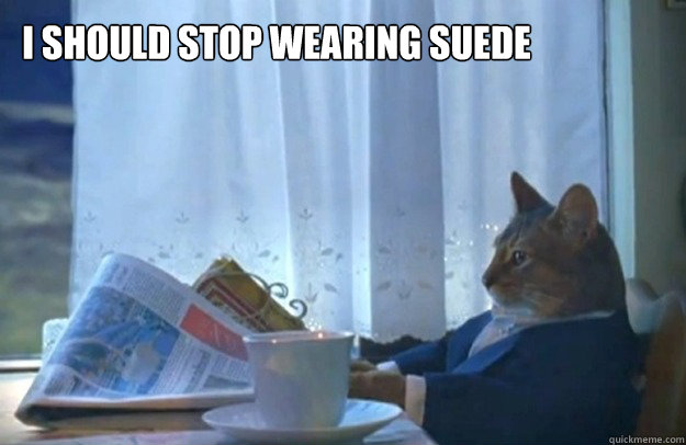 I should stop wearing suede - I should stop wearing suede  Sophisticated Cat