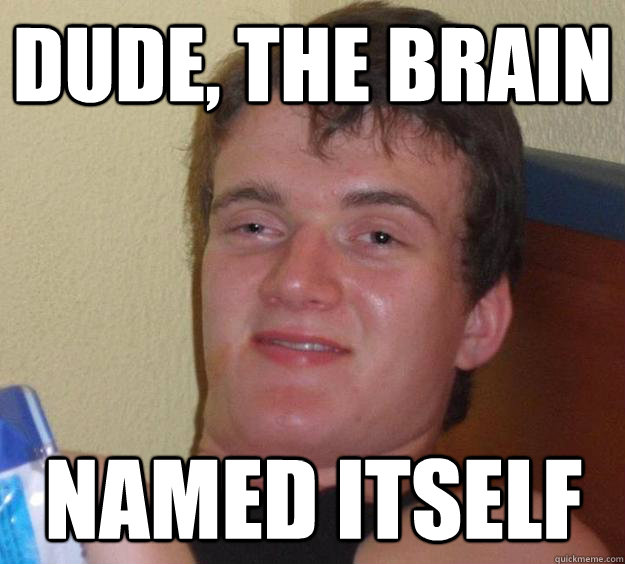 Dude, the brain Named itself - Dude, the brain Named itself  10 Guy