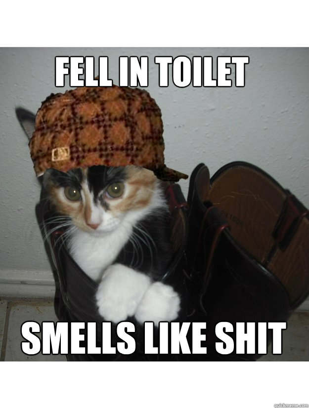 fell in toilet smells like shit