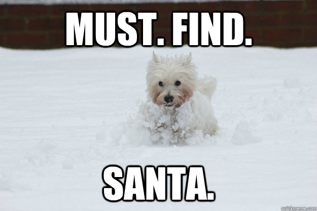 must. find. santa. - must. find. santa.  Daisy the Dog
