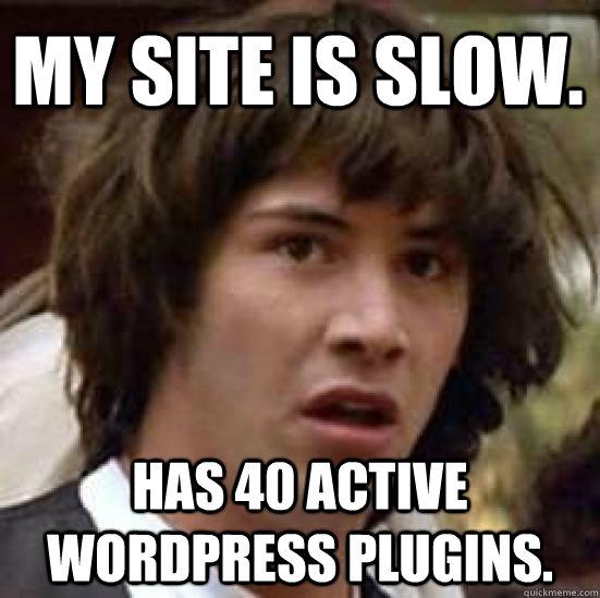 My Site is slow.  Has 40 active Wordpress Plugins. - My Site is slow.  Has 40 active Wordpress Plugins.  conspiracy keanu