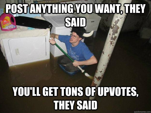 Post anything you want, they said you'll get tons of upvotes, they said