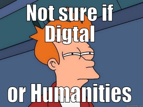 Digital Humanities Fry - NOT SURE IF DIGTAL OR HUMANITIES Futurama Fry