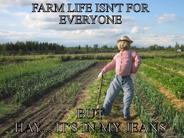 FARM LIFE ISN'T FOR EVERYONE BUT HAY... IT'S IN MY JEANS Scarecrow