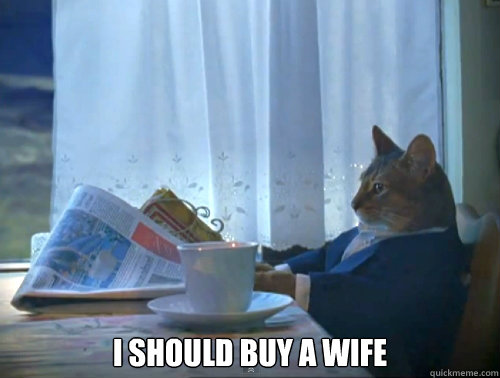 i should buy a wife -  i should buy a wife  The One Percent Cat