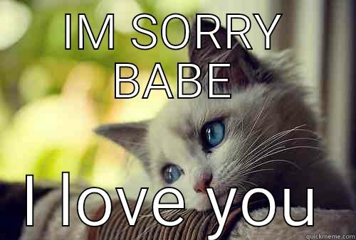 IM SORRY BABE I LOVE YOU First World Problems Cat