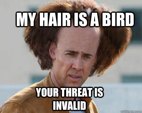 my hair is a bird your threat is invalid