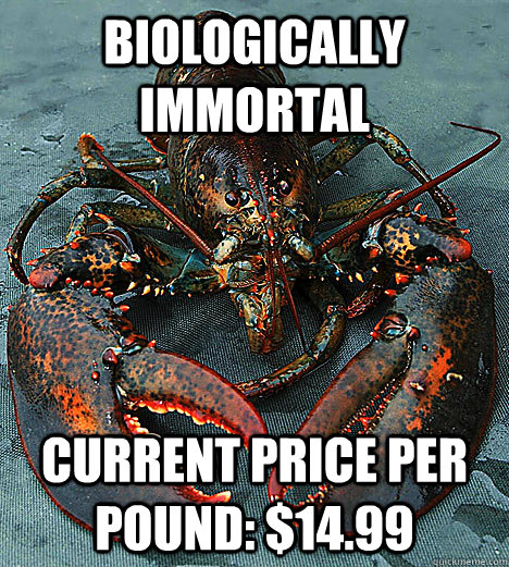 Biologically immortal Current price per pound: $14.99