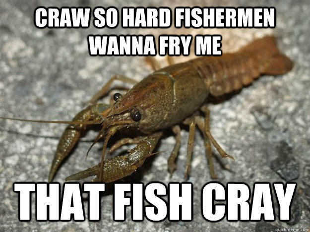 craw so hard fishermen wanna fry me That fish cray - craw so hard fishermen wanna fry me That fish cray  Crawfish