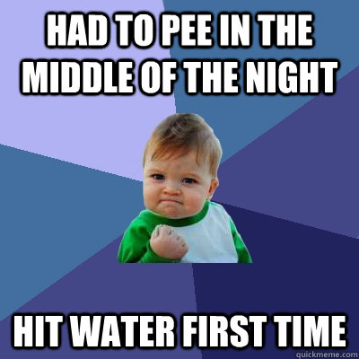 had to pee in the middle of the night hit water first time - had to pee in the middle of the night hit water first time  Success Kid