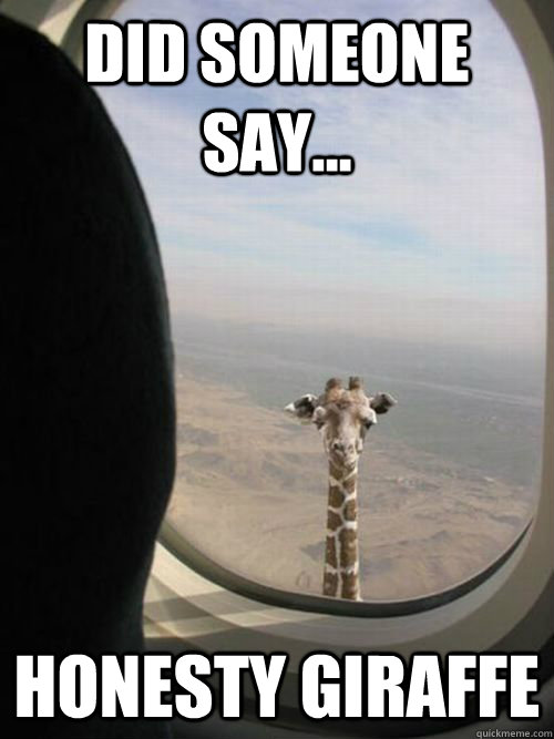 Did someone say... Honesty Giraffe - Did someone say... Honesty Giraffe  Flying Giraffe