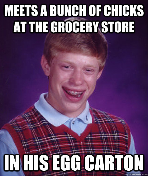 meets a bunch of chicks at the grocery store in his egg carton - meets a bunch of chicks at the grocery store in his egg carton  Bad Luck Brian
