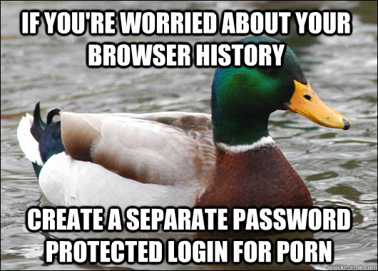 if you're worried about your browser history create a separate password protected login for porn - if you're worried about your browser history create a separate password protected login for porn  Actual Advice Mallard