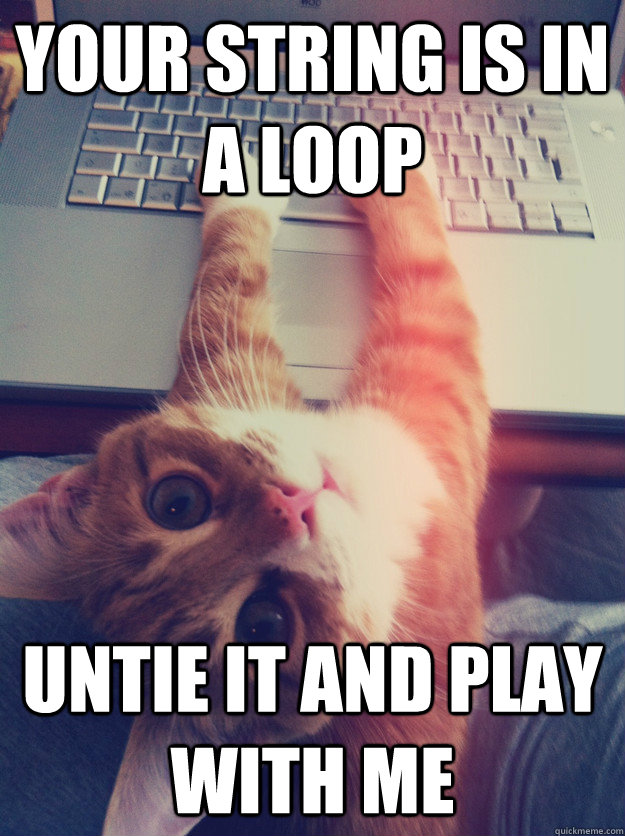 your string is in a loop untie it and play with me  Programmer Cat