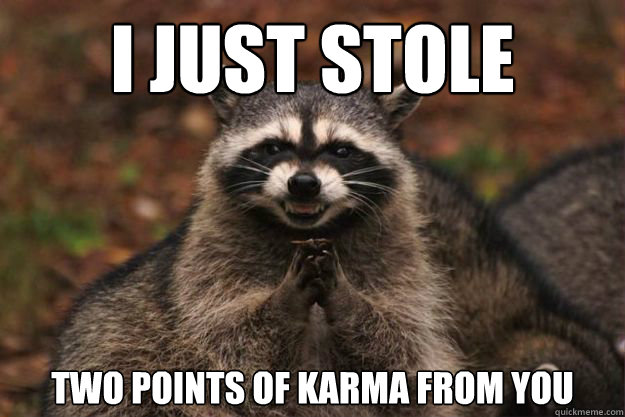 I just stole two points of karma from you - I just stole two points of karma from you  Evil genius racoon