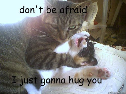 don't be afraid I just gonna hug you