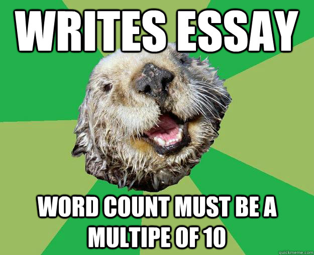 word count essay meme