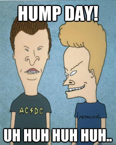hump day! uh huh huh huh..