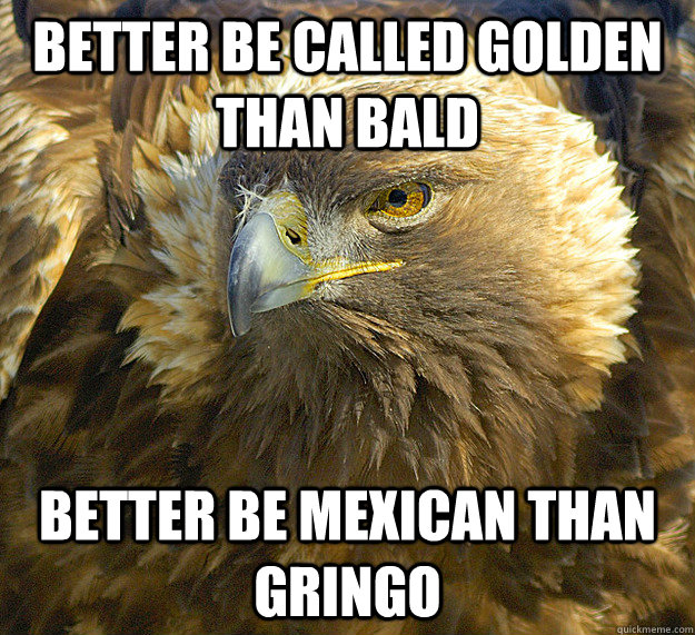 better be called golden than bald better be mexican than gringo