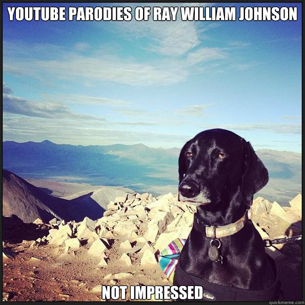 youtube parodies of Ray William Johnson  not impressed