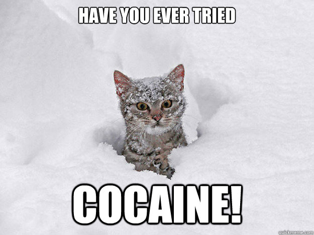HAVE YOU EVER TRIED COCAINE!