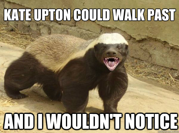 kate upton could walk past and i wouldn't notice - kate upton could walk past and i wouldn't notice  Honey Badger