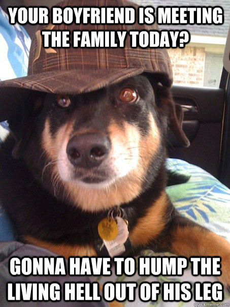 your boyfriend is meeting the family today? gonna have to hump the living hell out of his leg  - your boyfriend is meeting the family today? gonna have to hump the living hell out of his leg   Scumbag dog