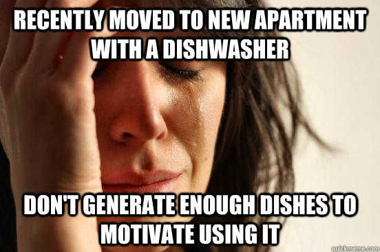 Recently moved to new apartment with a dishwasher Don't generate enough dishes to motivate using it - Recently moved to new apartment with a dishwasher Don't generate enough dishes to motivate using it  First World Problems