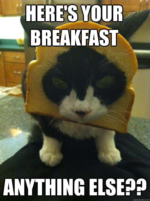 HERE'S YOUR BREAKFAST ANYTHING ELSE??  Angry Breaded Cat