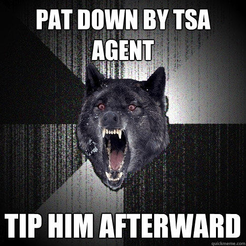 pat down by tsa agent tip him afterward  - pat down by tsa agent tip him afterward   Insanity Wolf