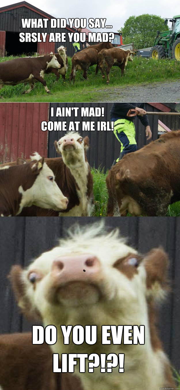 What did you say...  srsly are you mad? DO YOU EVEN LIFT?!?! I ain't mad! Come at me IRL!