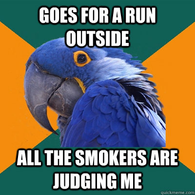 goes for a run outside all the smokers are judging me - goes for a run outside all the smokers are judging me  Paranoid Parrot