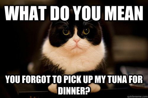 What do you mean you forgot to pick up my tuna for dinner?
