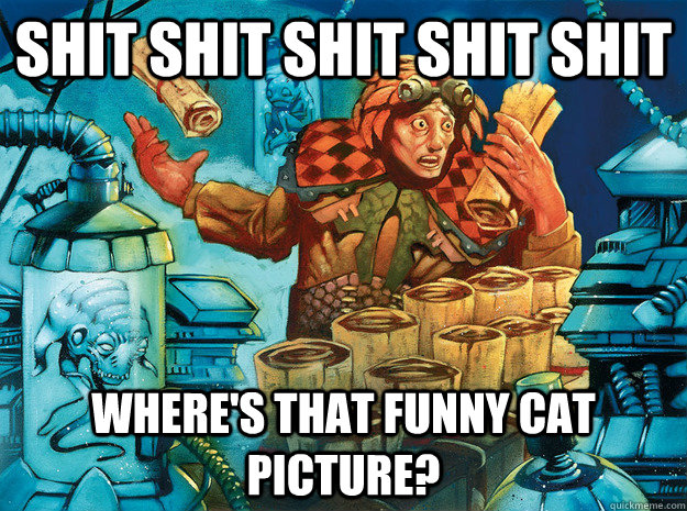 SHIT SHIT SHIT SHIT SHIT WHERE'S THAT FUNNY CAT PICTURE? - SHIT SHIT SHIT SHIT SHIT WHERE'S THAT FUNNY CAT PICTURE?  Frantic Search
