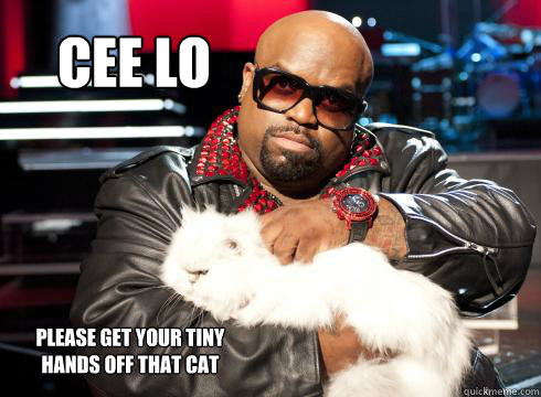 Cee lo  please get your tiny hands off that cat  cee lo