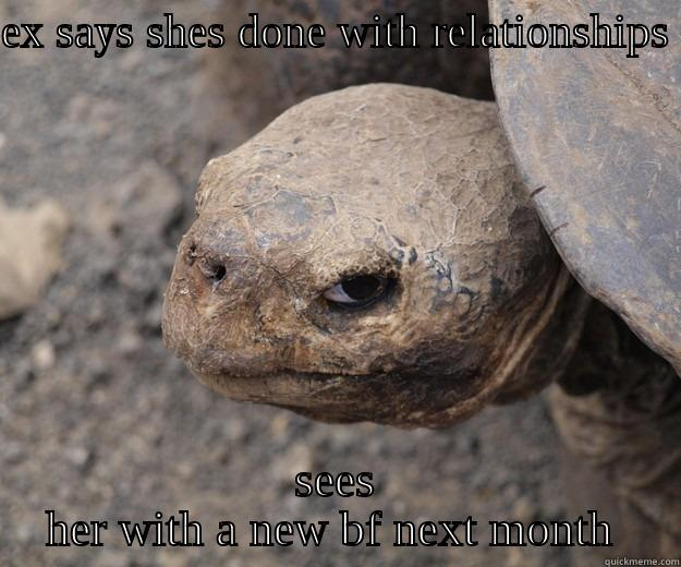 EX SAYS SHES DONE WITH RELATIONSHIPS  SEES HER WITH A NEW BF NEXT MONTH  Angry Turtle