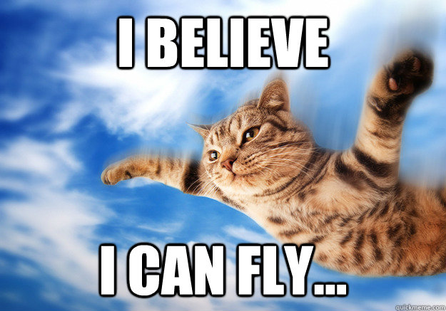 I BELIEVE  I CAN FLY...  I BELIEVE I CAN FLY CAT