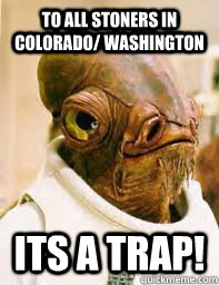 to all stoners in colorado/ washington ITS A TRAP! - to all stoners in colorado/ washington ITS A TRAP!  Its a trap