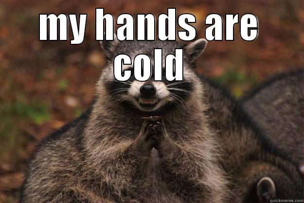 raccoon with cold hands - MY HANDS ARE COLD  Evil Plotting Raccoon