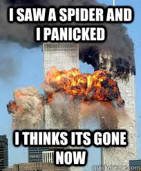 I saw a spider and I panicked  i thinks its gone now