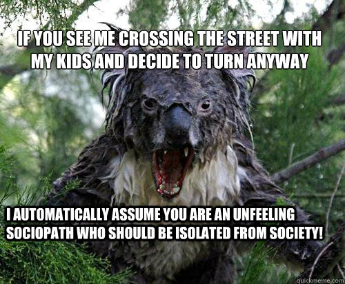 IF YOU SEE ME CROSSING THE STREET WITH MY KIDS AND DECIDE TO TURN ANYWAY I AUTOMATICALLY ASSUME YOU ARE AN UNFEELING SOCIOPATH WHO SHOULD BE ISOLATED FROM SOCIETY!