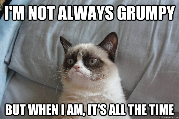 I'm not always grumpy but when i am, it's all the time - I'm not always grumpy but when i am, it's all the time  Misc