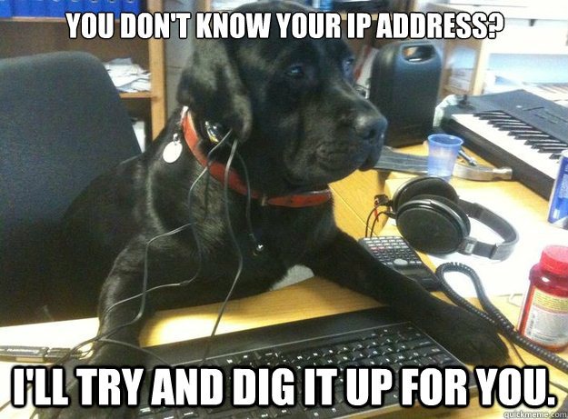 You don't know your IP address? I'll try and dig it up for you.
