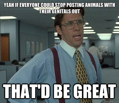 Yeah if everyone could stop posting animals with their genitals out That'd be great - Yeah if everyone could stop posting animals with their genitals out That'd be great  Lomberg