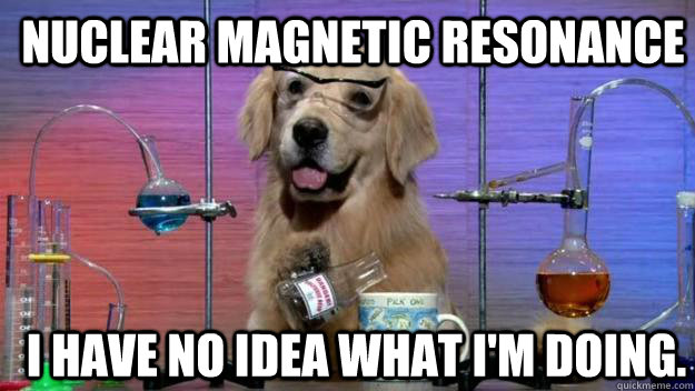 Nuclear magnetic resonance I have no idea what i'm doing. - Nuclear magnetic resonance I have no idea what i'm doing.  Chemistry Dog