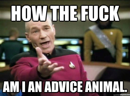 How the fuck am i an advice animal. - How the fuck am i an advice animal.  Annoyed Picard HD