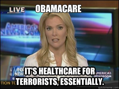 obamacare It's healthcare for terrorists, essentially. - obamacare It's healthcare for terrorists, essentially.  Megyn Kelly