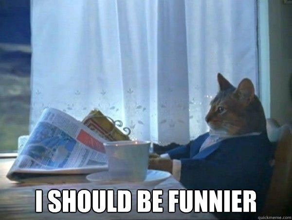 I should be funnier -  I should be funnier  morning realization newspaper cat meme