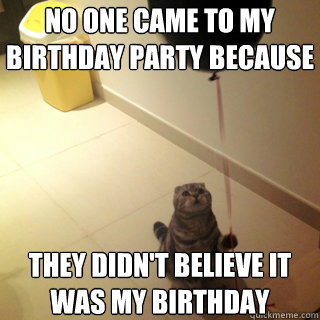 No one came To my birthday party because  they didn't Believe it was my Birthday - No one came To my birthday party because  they didn't Believe it was my Birthday  Sad Birthday Cat